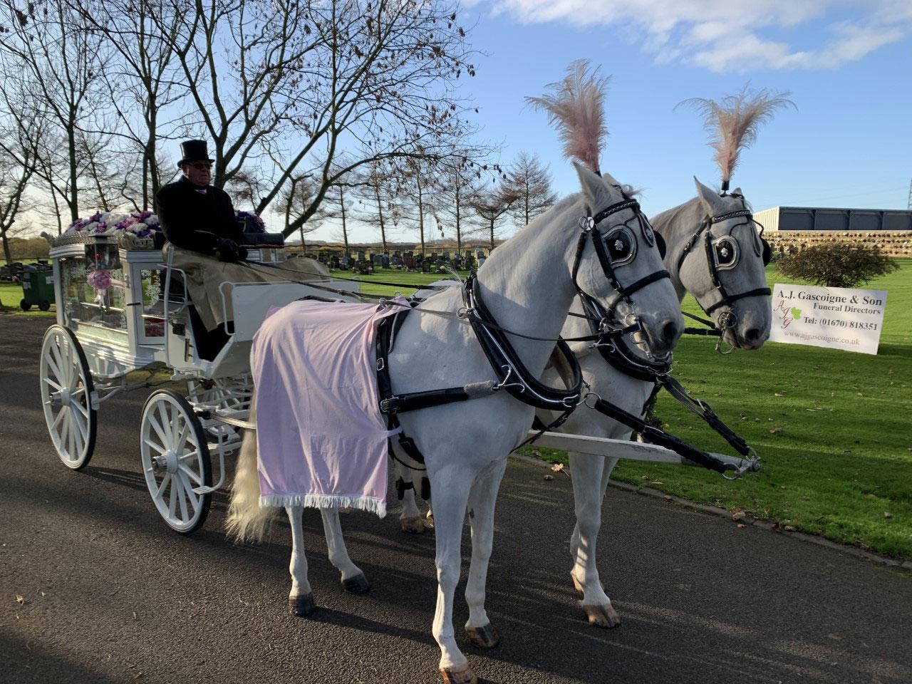 Horse Drawn Carriage at A.J. Gascoigne and Son